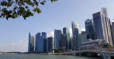 Investir en SCPI : Quelles sont les meilleures SCPI